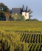 ¤ CHATEAU GABYWine tours and wine tastings, Bordeaux tourism, hotels Bordeaux, travel ideas in Bordeaux, organize and reserve your stay in B...