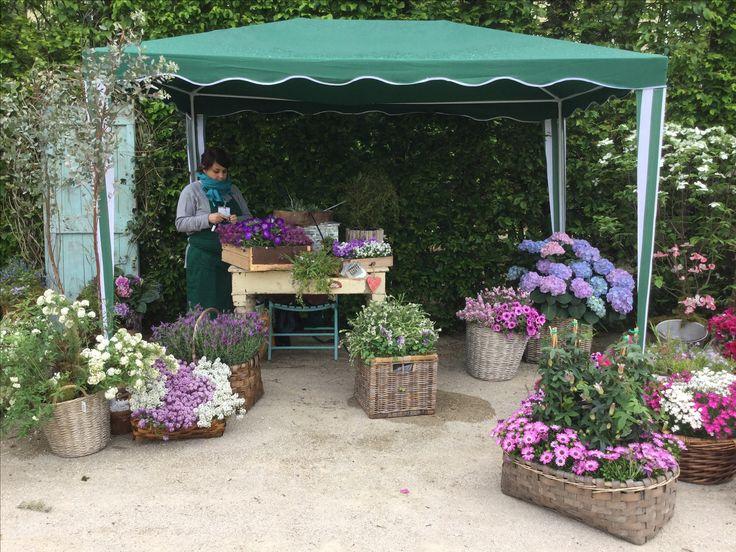 Nel segno del giglio 2016  Flower arrangement