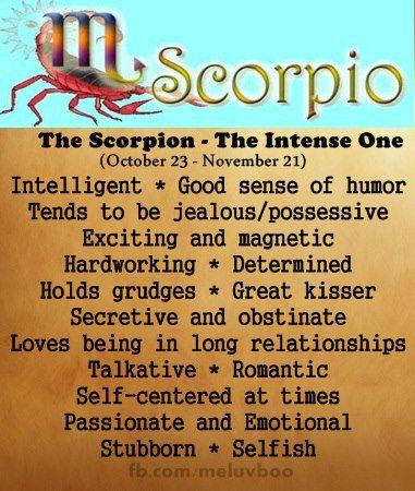 zodiac signs - scorpio - the scorpion