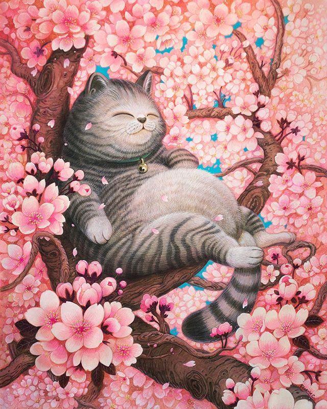 Открытки коты весной, загрузить открытку сообщение
