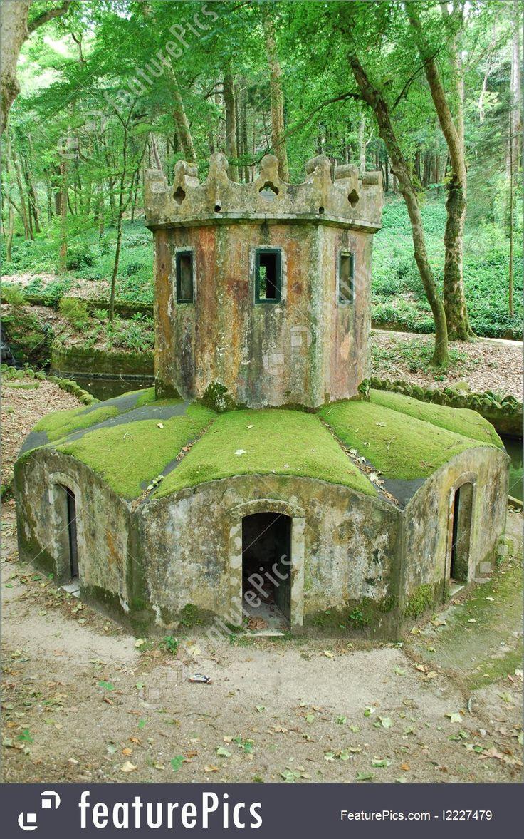 Mossy dom na kaczki w las