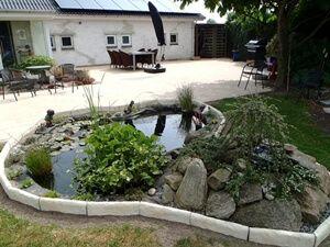 trädgård med sten
