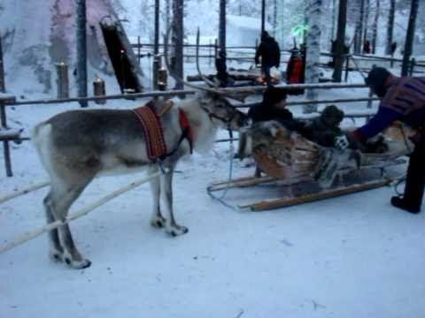 A trip to Rovaniemi and Santa Claus Village / Wycieczka do Rovaniemi i Wioski Świętego Mikołaja - YouTube