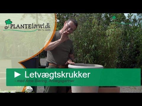 Letvægtskrukker og plantekrukker med hjul fra Plantetorvet.dk