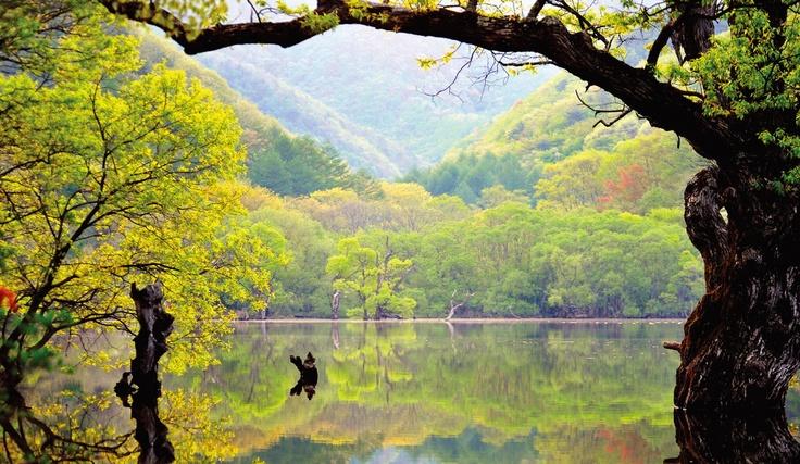 #Juwangsan National Park, Korea