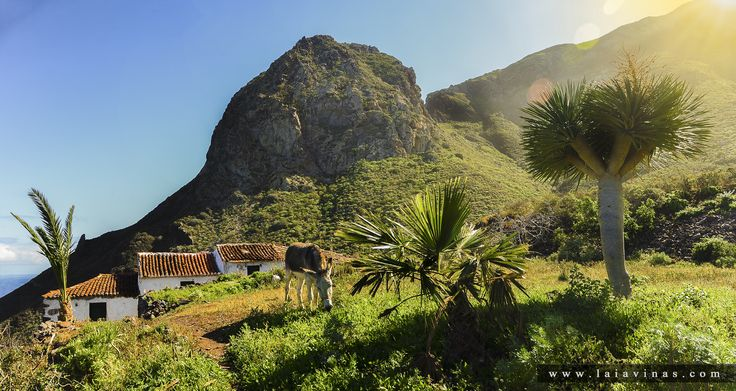 Casa típica Canaria en La Reserva Natural Integral de los Roques de Anaga.