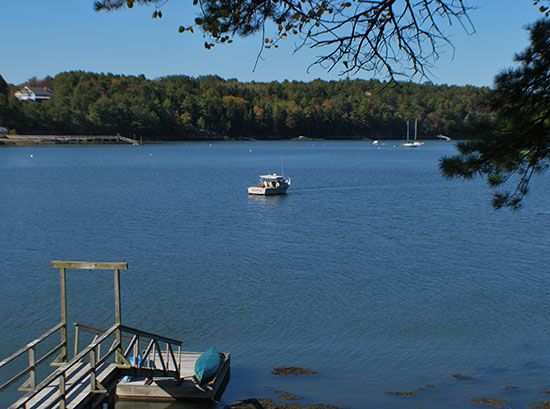 The Gulls Cottage - On the Water in Maine Vacation Property