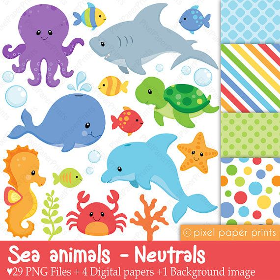 Sea animals - Neutrals - Clip art and digital paper set on Etsy, $6.00