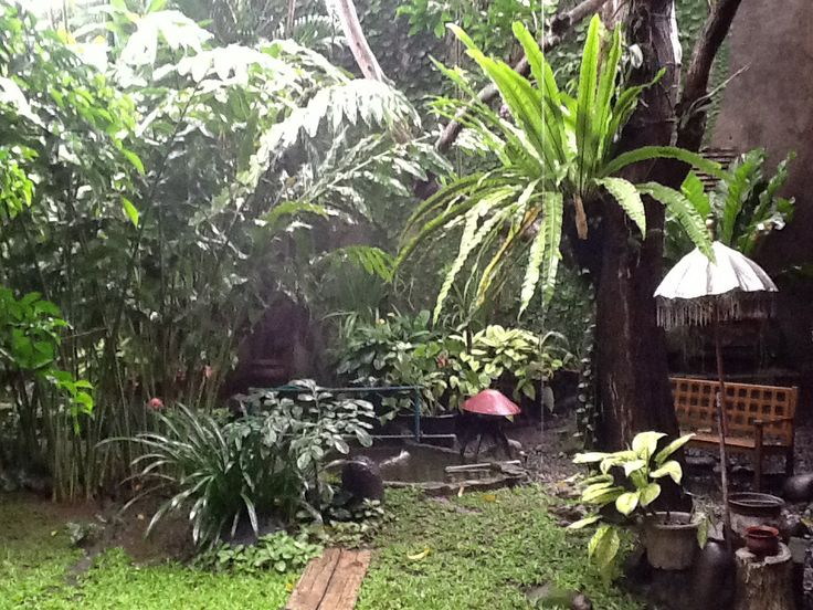 2160 best images about mediterranean tropical retreat for Bali garden designs pictures