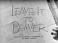 Leave It To Beaver~ Barbara Billingsley, Hugh Beaumont, Tony Dow and Jerry Mathers as the Beaver~ 1957-1963