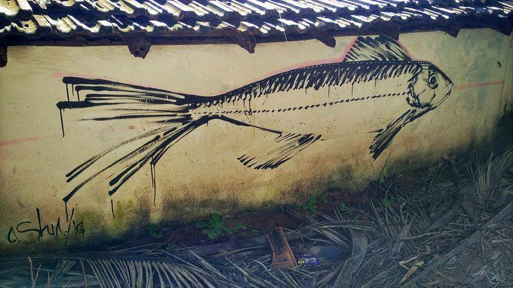 Fish on the beach - Mapcarta