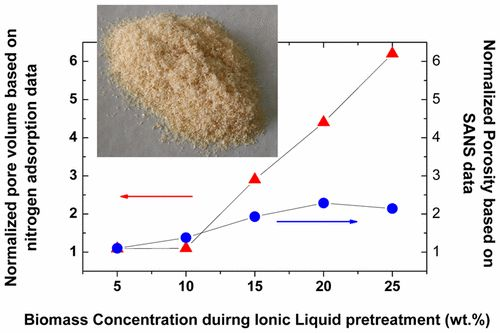 Effect of Ionic Liquid Pretreatment on the Porosity of Pine: Insights from Small-Angle Neutron Scattering, Nitrogen Adsorption Analysis,…