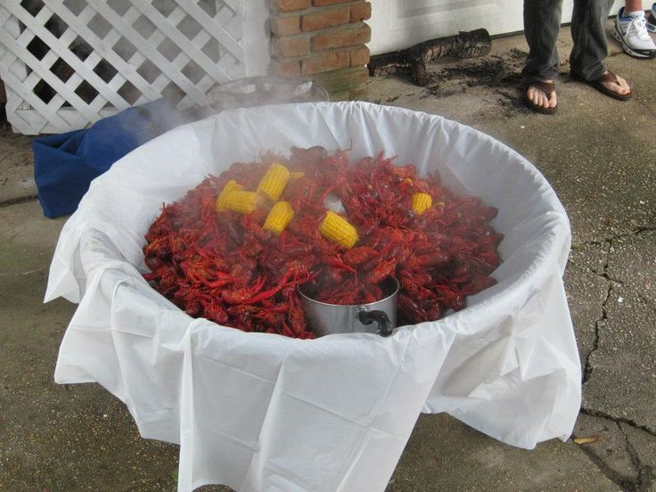 Always A Reason To Party Down South! Crawfish Boil in Style! Box K Events - Baton Rouge, La Tents! Tables! Chairs! Weddings! Tailgates! Crawfish Boils!