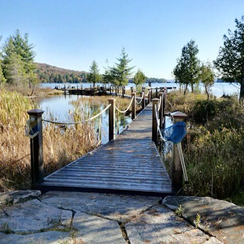 The lot is twenty-five acres which will let you commune with nature at its most primitive. Explore Waddy's creek which is adjacent to the cottage and fish for the day and enjoy nature at its finest. Or kayak peacefully along the shore while taking in the breathtaking surroundings.