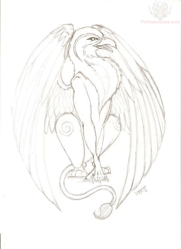 Griffin Drawings | Griffin Tattoo Drawing