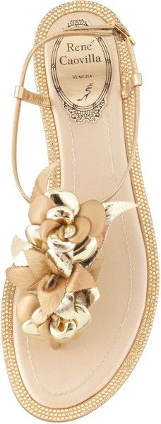 Rene Caovilla Mixedmedia Flat Flower Thong Sandal in Gold (GOLD )
