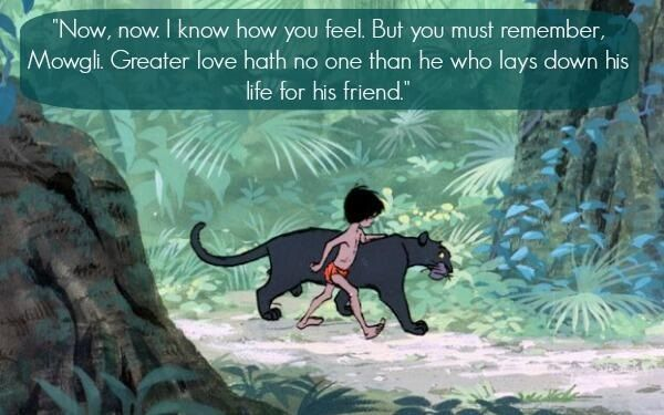 Jungle Book Love Quotes: 17 Best Images About The Jungle Book On Pinterest