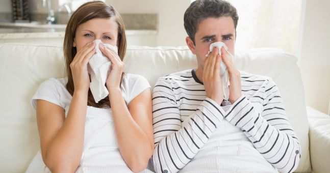 What to Eat When You are Sick: The Best and Worst Foods   1mhealthtips