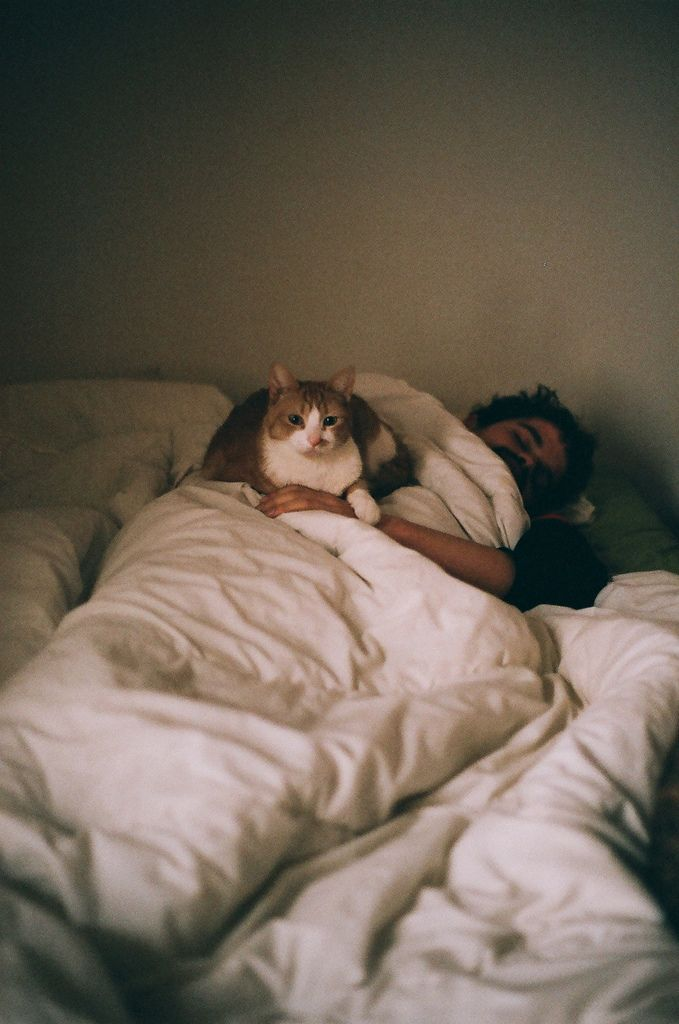 this is all I need to make me happy: a ginger cat and a sleepy, handsome man friend
