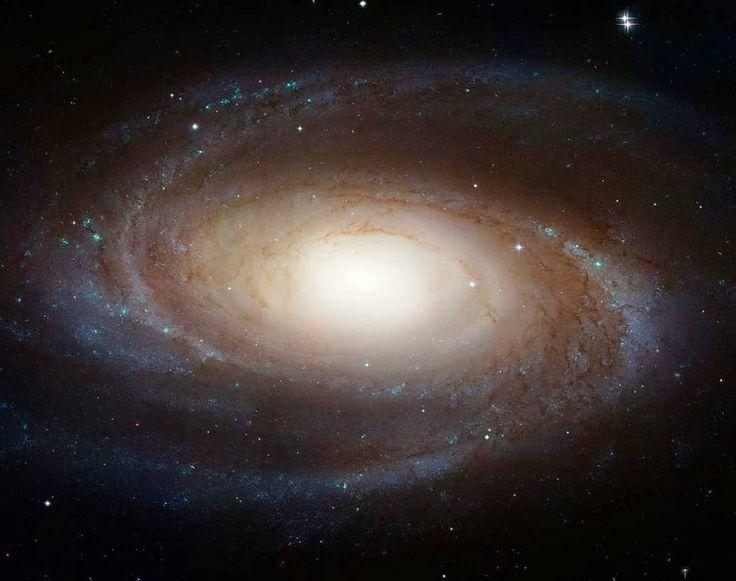 435 отметок «Нравится», 1 комментариев — Adrian (@adrian.l4u) в Instagram: «Galassia a spirale M81 a 11.6 milioni di anni luce da noi. Foto del Hubble Space Telescope. Credit…»