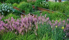 New York City's High Line on an Evening in May, 2013 | Flickr - Photo Sharing!