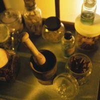 Přeslička rolní a osteoporóza