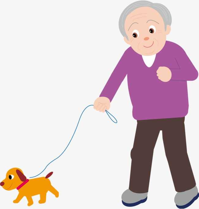 Old People Walk The Dog For A Walk People Vector Dog Vector Grandpa Png And Vector With Transparent Background For Free Download Dog Walking Dog Vector Cartoon Dog