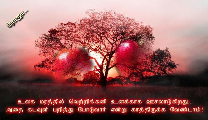 valentine's day tamil songs 2015