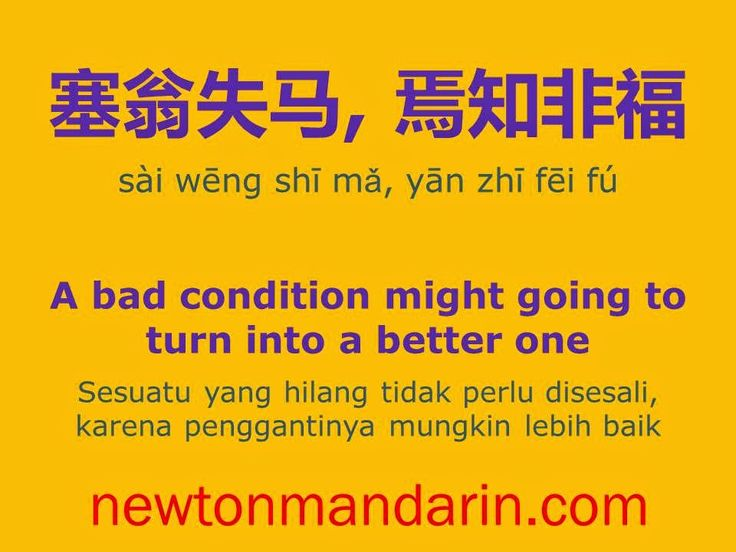 newtonmandarin.com: A bad condition might going to turn into a better ...