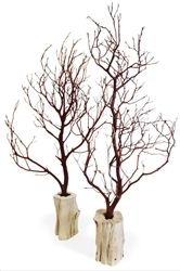Super cute set of 10 manzanita branches, with matched grapewood bases. Shipping included! Bloomsandbranches.com