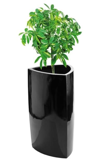 Die besten 25+ Blumenkübel fiberglas Ideen auf Pinterest - pflanzkubel aus beton gestalterische highlights