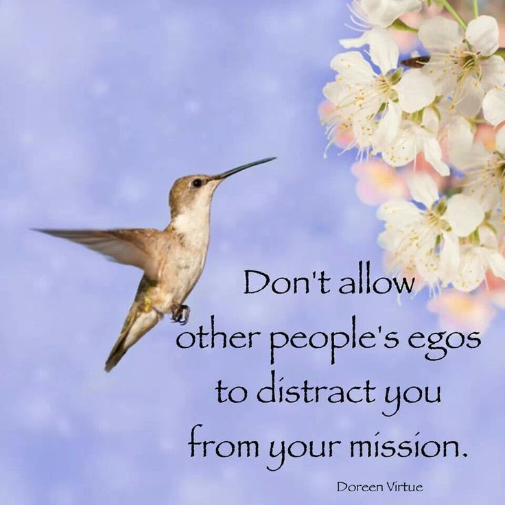 Don't let anyone's ego get in your way. Yours or theirs.