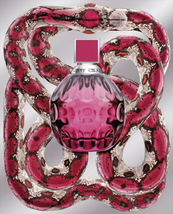 Exotic by Jimmy Choo | Can't get enough of... | Pinterest | Perfume, Jimmy choo and Fragrance
