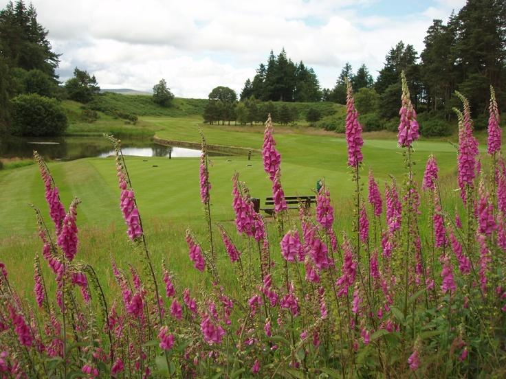 Gleneagles Golf Course, Scotland