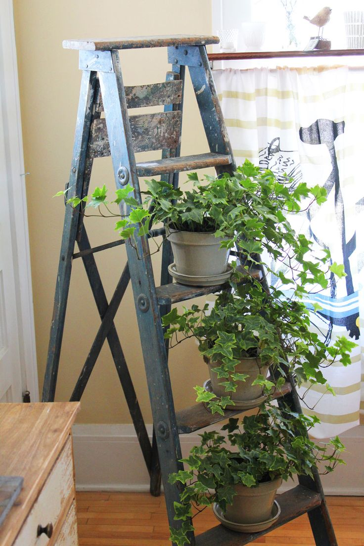 best stuff to try images on pinterest ladder step stools and