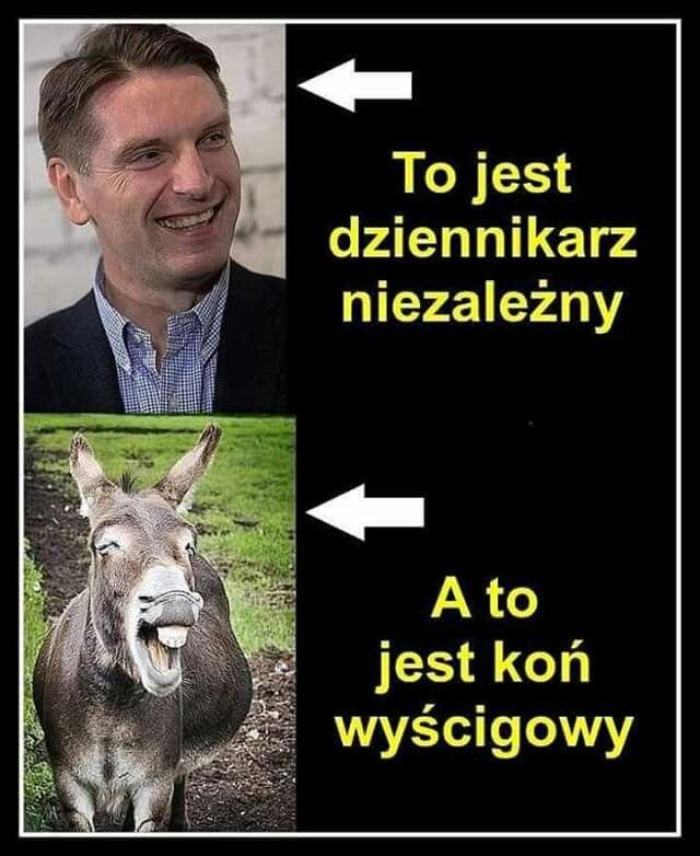 Pin by Patryk Sidorowicz on fajne zdjęcia | Memy, Śmieszne