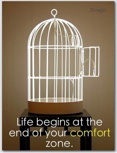 comfort zone free bird www.zivaglo.com