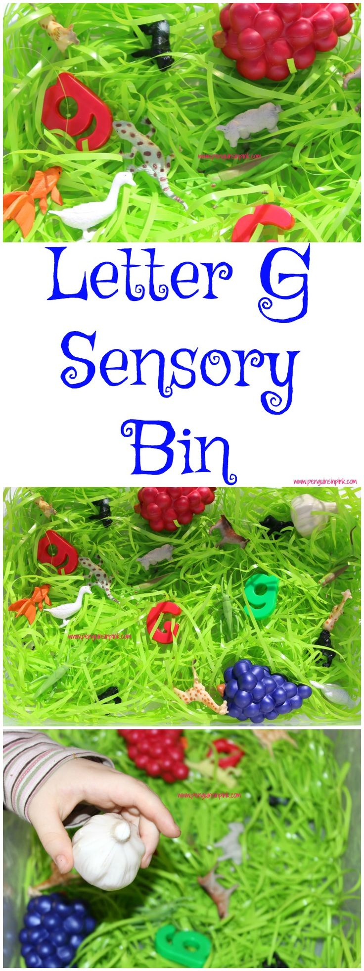 """Letter G Sensory Bin - This sensory bin has it all giraffes, gorillas, geckos, geese, and other items beginning with letter """"G""""."""