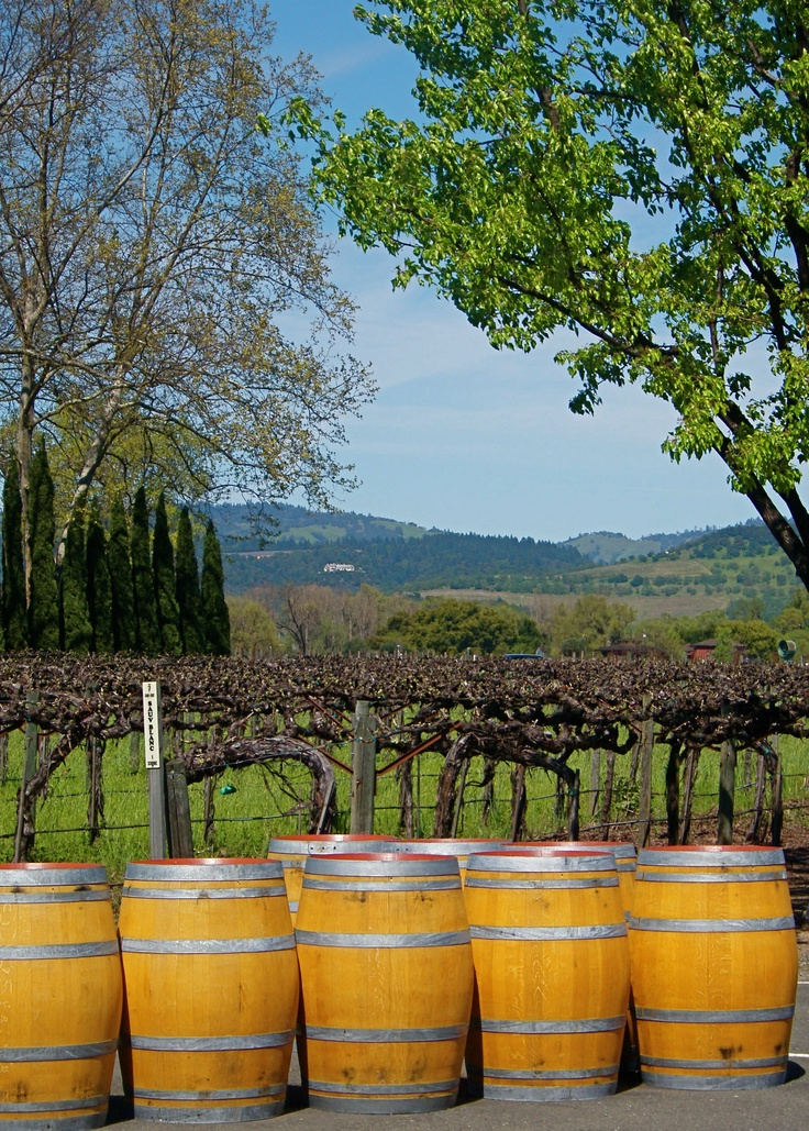 Napa Cakebread Winery photo by Michele Nelson
