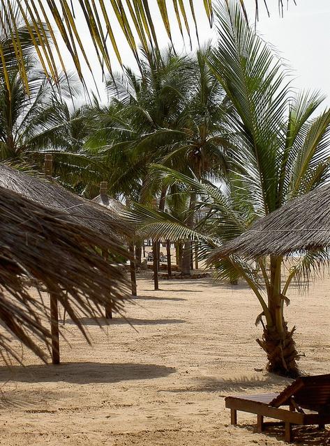 Kenya by Flygstolen, via Flickr #Kenya #Africa #Afrika #Travel #Adventure #Resa #Äventyr #Resmål #strand #beach #semester #holiday #vacation #semester #palm #coconut #beach
