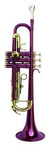 a nueva banda purpura trompeta wcase approved garantia
