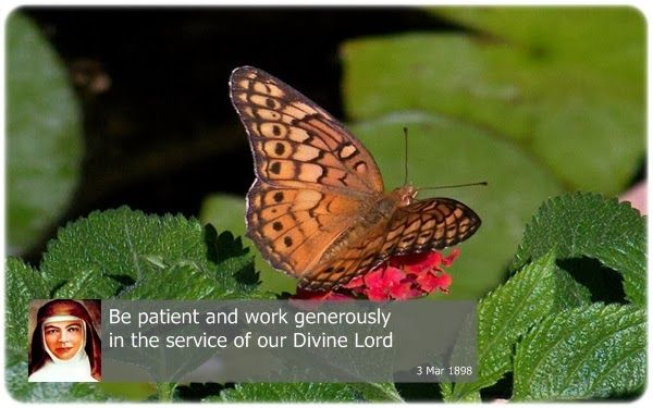Be patient and work generously in the service of our Divine Lord