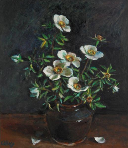 Rose, Margret Olley