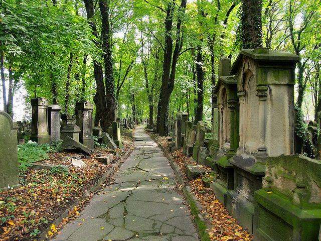 Krakow Jewish Cemetery by DangerousBiz, via Flickr