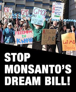 Petition - Stop Monsanto's Dream Bill - Care2 News  Network secure.foodandwaterwatch.org/site/Advocacy;jsessionid=D4522A8B8752FFD4AA4DA7D13FA08CBD.app329a?pagename=homepage&page=UserAction&id=2484&autologin=true