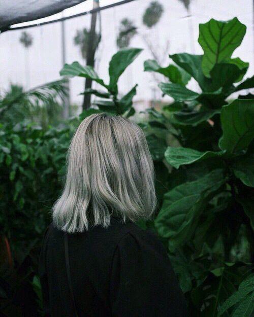Grey hair @jacintachiang