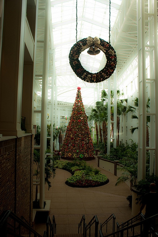 Wreath And Christmas Tree At Gaylord Opryland. Best Christmas Light  Displays!