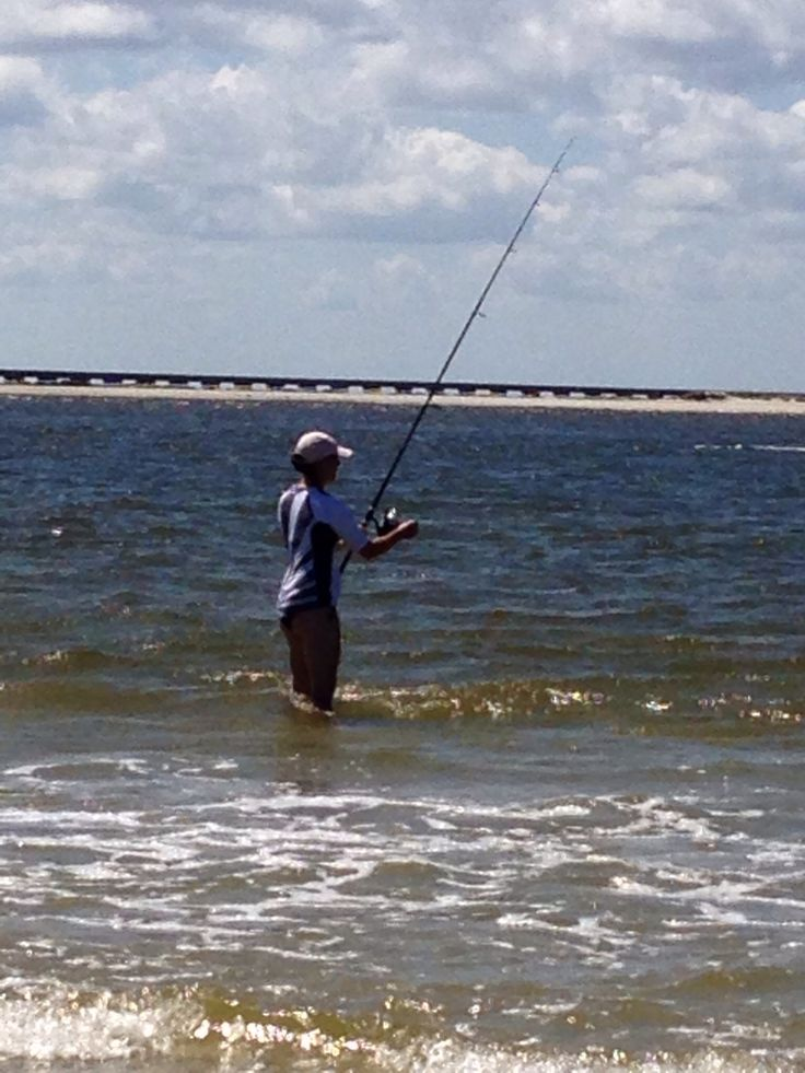 1736 best images about fishing on pinterest fishing rods for Surf fishing bait
