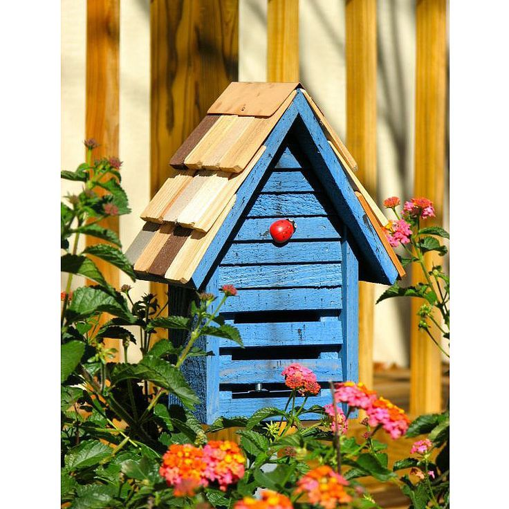 Ladybug house. Have to make something like this for the greenhouse.