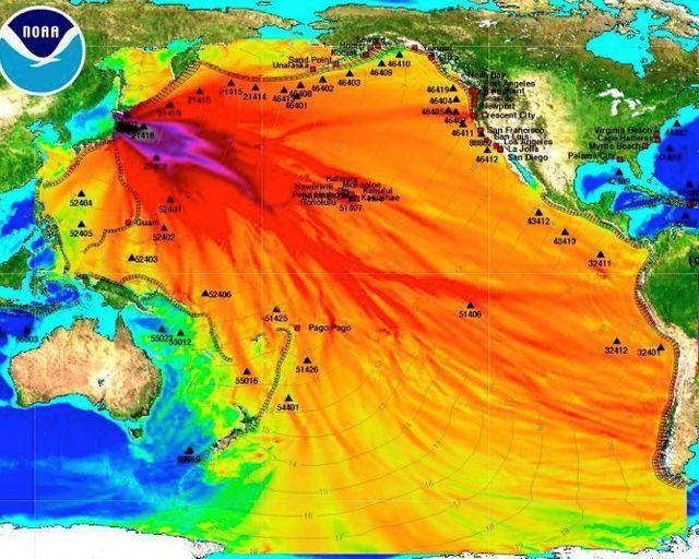 Fukushima - coming to a town near you | Openhand
